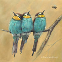 'The challenger'-Bee-eaters, 20x20 cm, oil painting (sold)