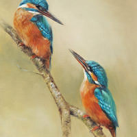 'Kingfishers', 20x26 cm, oil painting (sold)