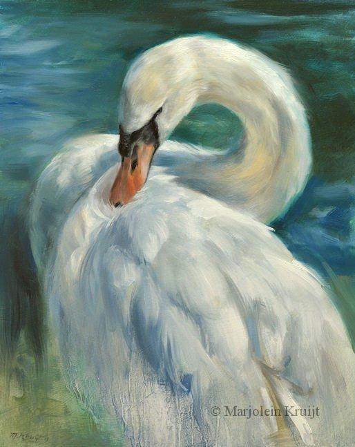 Bird Paintings Bird Art By Artist Marjolein Kruijt