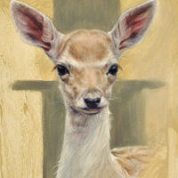 'Young fallow deer', 15x20 cm, oil painting (NFS)