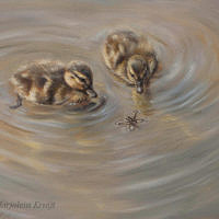 'Strange encounter'-ducklings, 24x30 cm, oil painting (sold)