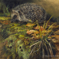 'Hedgehog', 20x20 cm, oil painting (sold)