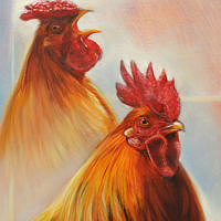 'Competition'- roosters, 24x18 cm, oil painting (for sale)