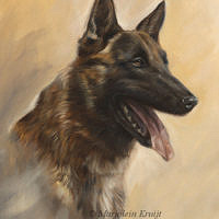 'Shepherd dog'- portrait, 30x40 cm, oil painting (sold/commission)