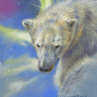 'Hope'- polarbear at Northernlight, 18x23 cm, pastel painting (sold)
