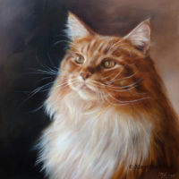 'Maine coon'-Joppe, 30x30 cm, oil painting (sold/commission)
