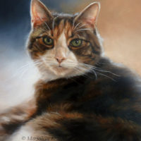 'Snoopy' -cat portrait, 30x40 cm, oil painting (sold/commission)