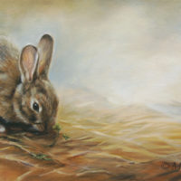 'Rabbit', 60x30 cm, oil painting (sold)