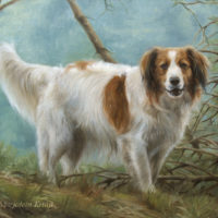 'Kooiker'- pet portrait, 60x50 cm, oil painting (sold/commission)