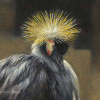 'Silence'- Grey crowned crane, 40x25cm, oil painting (sold)