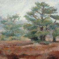 'Lheebroekerzand3'-Drenthe, 30x30 cm, oil, (for sale)
