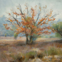 'Lheebroekerzand4'-Drenthe, 30x30 cm, oil (sold)