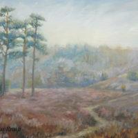 'Lheebroekerzand7'- Drenthe, 60x40 cm, oil (for sale)