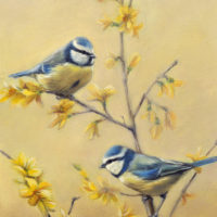 'Blue tits', 18x24 cm, oil painting (for sale)