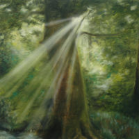 'Ray of light', 60x60 cm, oil painting (sold)