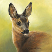 painting british wildlife roe deer buck artist Kruijt