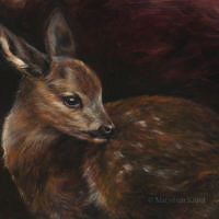 'Roe deer fawn', 24x18 cm, oil painting (sold)