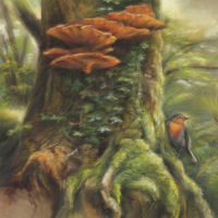 'Magic Tree'-Eur. robin, 47x67 cm, pastel painting (for sale)