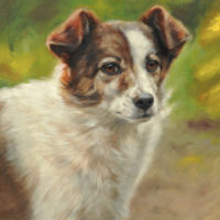 'Teddy'- dog portrait, 20x30 cm, oil painting (sold/commission)