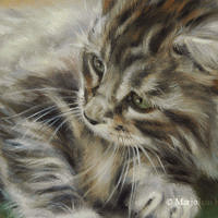 'Kitten' -cat portrait, 20x15 cm, oil painting (sold)