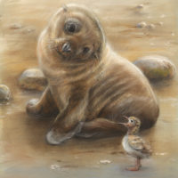 'Hi!'-sea lion and tern baby, 20x23 cm, pastel (sold)