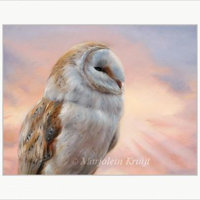 Art print wildlife art Barn owl by Marjolein Kruijt