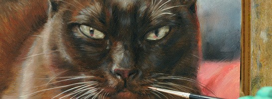 Portrait of burmese cat by feline artist Marjolein Kruijt