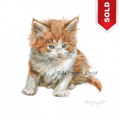 Maine coon kitten illustration by Marjolein Kruijt (sold)