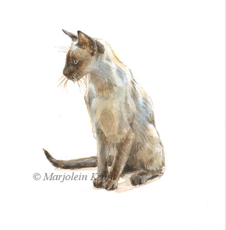 Siamese cat illustration, 10x10 cm, Marjolein Kruijt (sold)