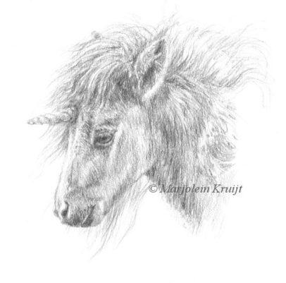 Eenhoorn tekening door Marjolein Kruijt (te koop)