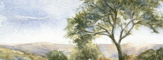 Dartmoor landschap aquarel schilderij door Marjolein Kruijt
