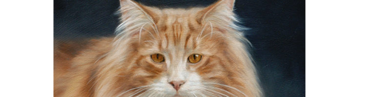 Northern Forest cat portrait painting by Marjolein Kruijt