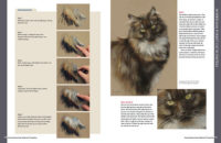 Preview Book drawing and painting animals