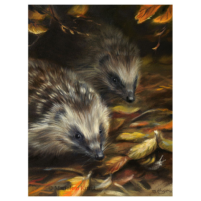 'Hide and seek!'-Hedgehogs & snail, painting (for sale)