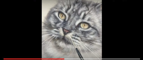 sept-video-siberischekat