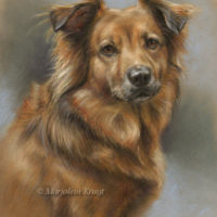 'Tess', 30x40 cm, pastel (sold/commission)