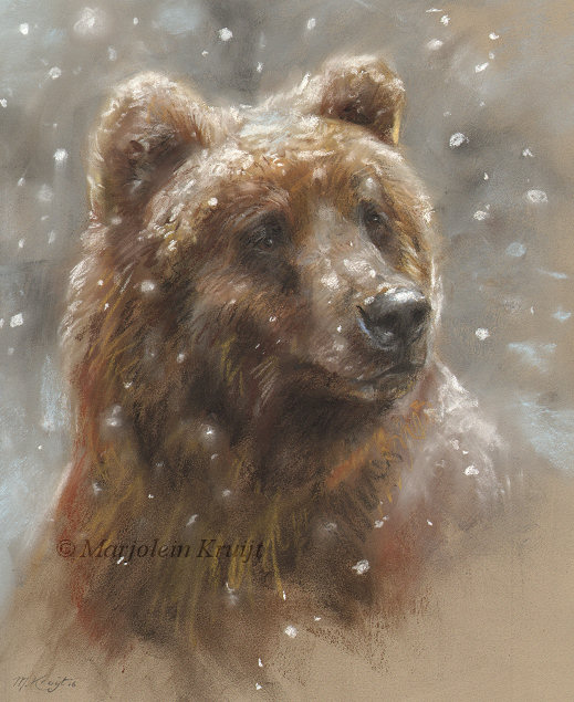 Wildlife Art By Artist Marjolein Kruijt