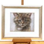 'Kitten', 22x17 cm, portrait in pastel (for sale)