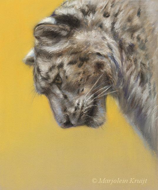 'Sneeuwluipaard', 20x24 cm, pastel € 580 excl. lijst