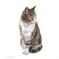 Miniature portrait, tabby cat, acrylics, 10x10 cm, Marjolein Kruijt (sold)