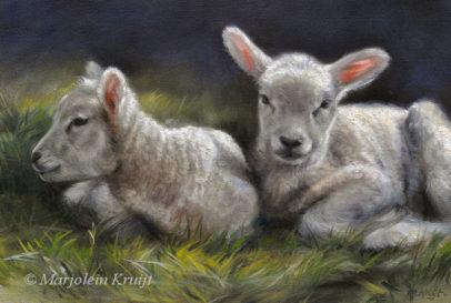 'Little lambs', painting in oil, Marjolein Kruijt (sold)