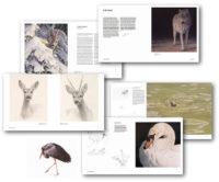boek-wild-in-europa-renso-tamse-wildlife-kunstenaar-preview