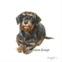 Dachshund, miniature pet portrait in acrylics, Marjolein Kruijt (sold/commissioned)