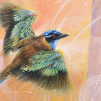 Close-up Illumined I, atelornis pittoides, detail of a painting by Marjolein Kruijt
