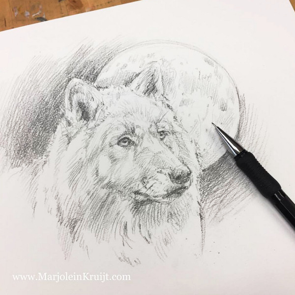 wolf at full moon drawing - sketchbook Marjolein Kruijt