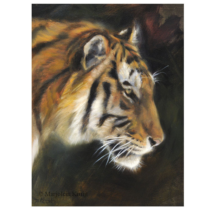 'Tiger', oil painting 24x18 cm, (for sale)