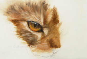 Cat eye demo oil painting - Marjolein Kruijt