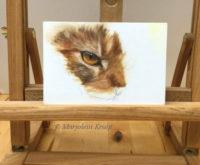 Cat eye demo oil painting - Marjolein Kruijt