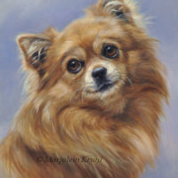 'Chihuahua', 24x18 cm, oil on panel (sold/commission)