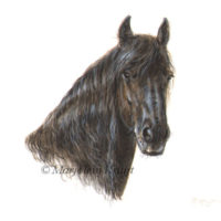 Friesian horse miniature portrait painting 11x11 cm (sold/commission)